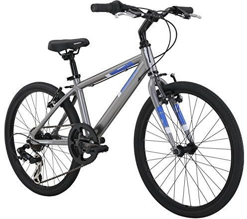 Diamondback Bicycles Insight 20 Complete Children's Performance Hybrid Bike, 20-Inch Wheels/One Size, Silver $288.99 (reg. $330.00)