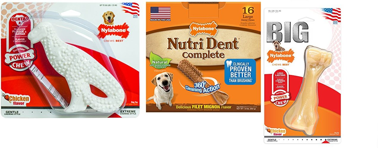 Deal of the Day: Save up to 40% on Nylabone Dog Toys & Treats