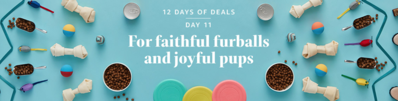 Day of Deals for Dogs = Excellent Deals for Your Puppers!