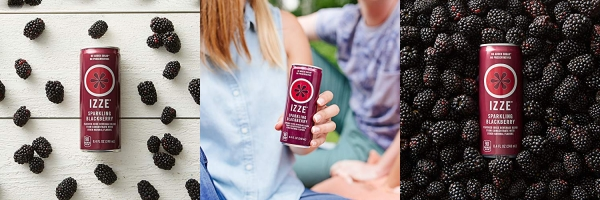 Purchase IZZE Sparkling Juice, Blackberry, 8.4 oz Cans, 12 Count on Amazon.com
