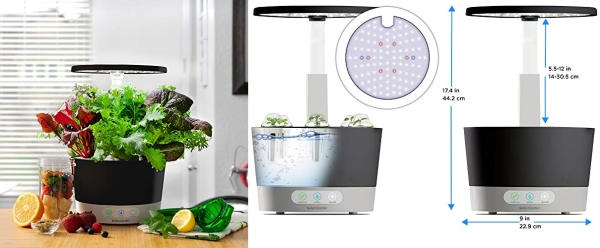 Purchase AeroGarden Harvest 360, Black on Amazon.com