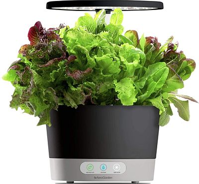 Purchase AeroGarden Harvest 360, Black at Amazon.com