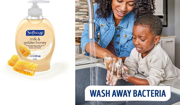 Purchase Softsoap Liquid Hand Soap, Milk and Honey - 7.5 fluid ounce (Pack of 6) on Amazon.com