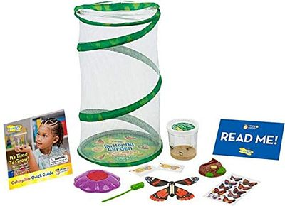 Purchase Insect Lore Butterfly Mini Garden Gift Set with Live Cup of Caterpillars Life Science & STEM Education at Amazon.com