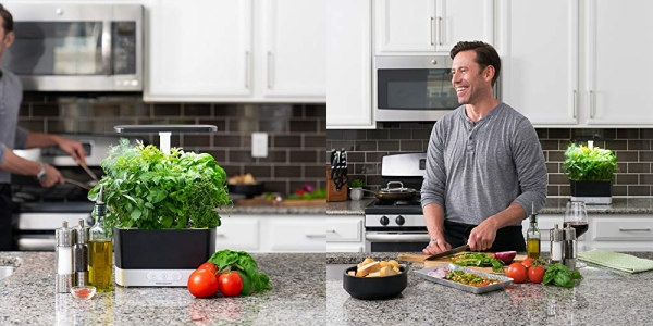 Purchase AeroGarden Harvest - With Heirloom Salad Greens Pod Kit (6-Pod) on Amazon.com